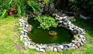 agua verde en los estanques