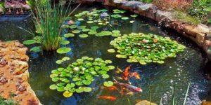 construccion de estanque prefabricado