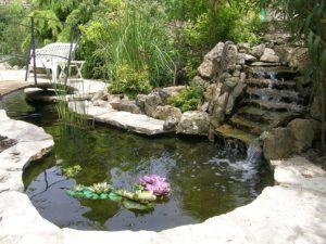donde colocar estanque de jardin