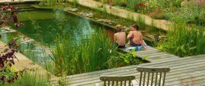 estanque-de-natación