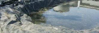 Lona estanque