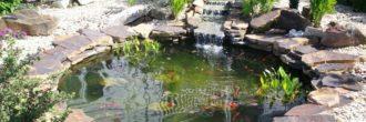 Estanque jardín