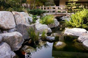 estanque japones