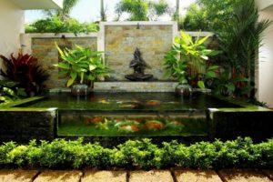 estanque koi moderno